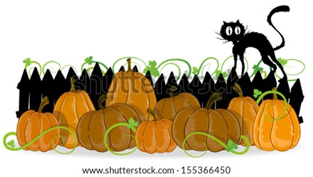 Pumpkins with leaves and  sprouts are under the fence on which there is a black cat - stock vector