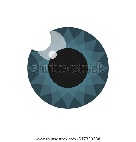 Pupil. Eye. Image for the logo. Blue Grey