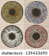 Pupil variations. Macro human eye. - stock vector