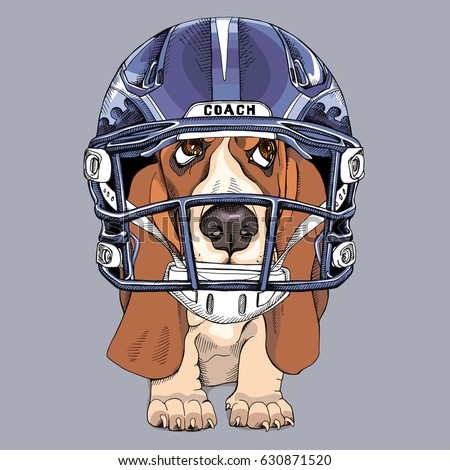 Image result for Illustrations of sports hounds