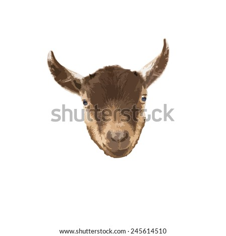 Pygmy Goat head vector