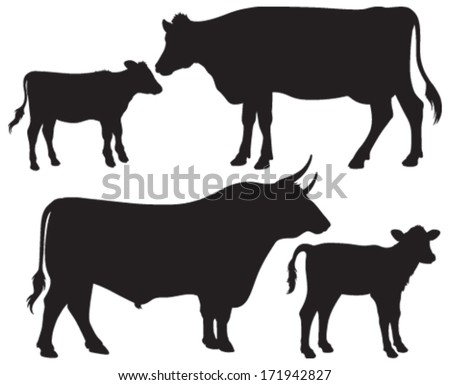 Beef Cow Stock Images, Royalty-Free Images & Vectors | Shutterstock