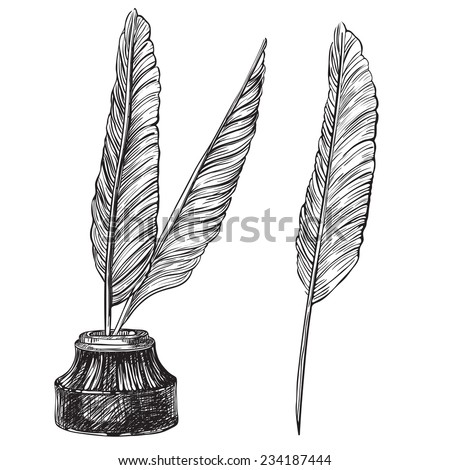 Quill Pens and inkwell. Vector set of retro inkwell and quill feathers at engraving style.   - stock vector