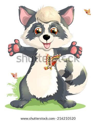 raccoon - stock vector
