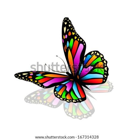 Rainbow butterfly logo - photo#7