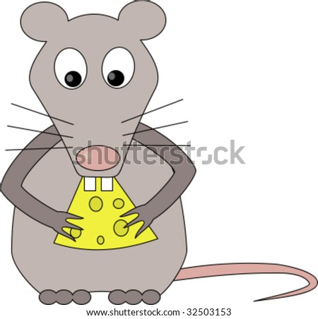 Rat eats cheese
