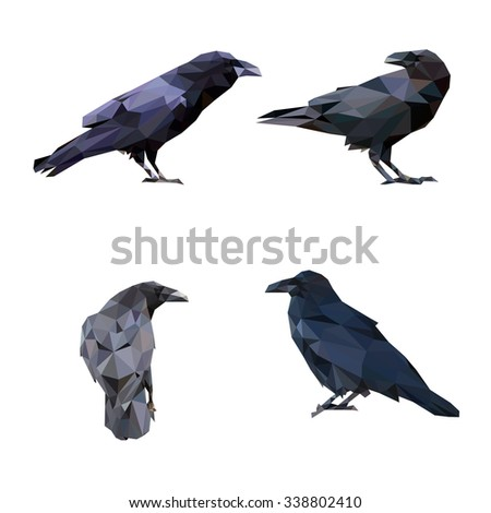Ravens in low polygon style on white background, vector illustration - stock vector