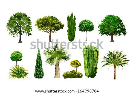 realictic tree set - stock vector