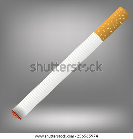 Realistic cigarette  on a grey background. Cigarette burns.      - stock vector