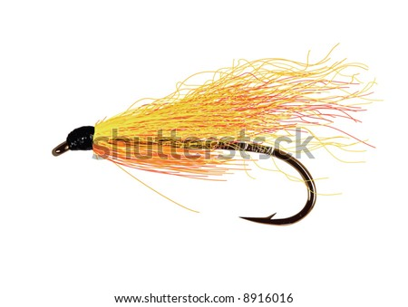 Realistic,detailed fly fishing lure in yellow and orange colors. Layered and grouped.