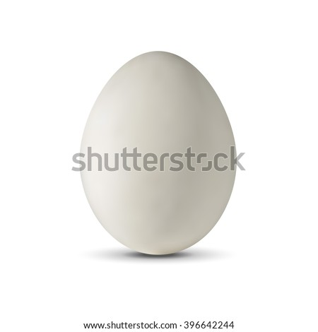 Realistic egg on a white background. Vector illustration