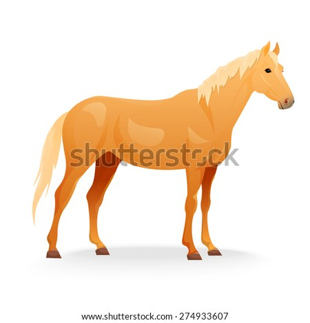 Realistic horse with red coat. Vector illustration