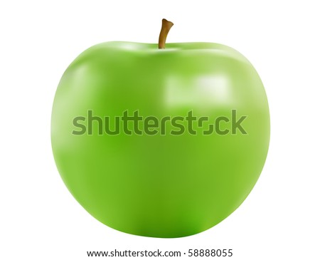 Realistic illustration of the green ripe apple isolated over white