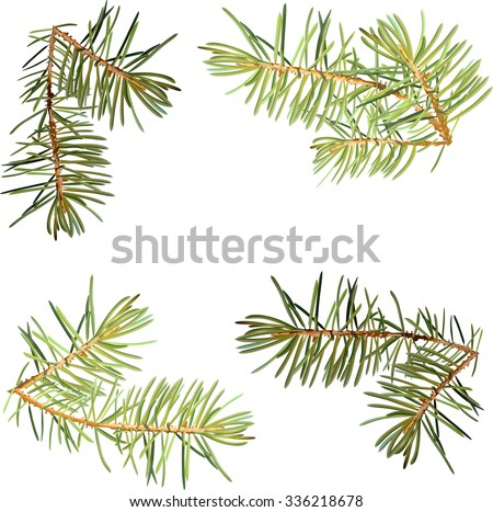 Realistic needles, spruce branches Christmas tree, isolated detailed vector, frame of spruce branches, template for design - stock vector
