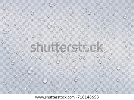 Realistic rain drops on the transparent background. Vector