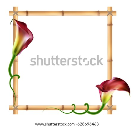 Realistic Red Calla Lily Bamboo Frame Stock Vector 628696463 ...