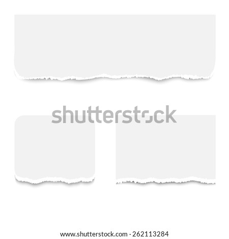 Realistic torn paper pieces, isolated on white background. Vector illustration
