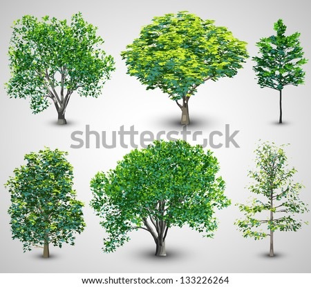 Realistic Tree Set with Sunlight | EPS10 Vector - stock vector