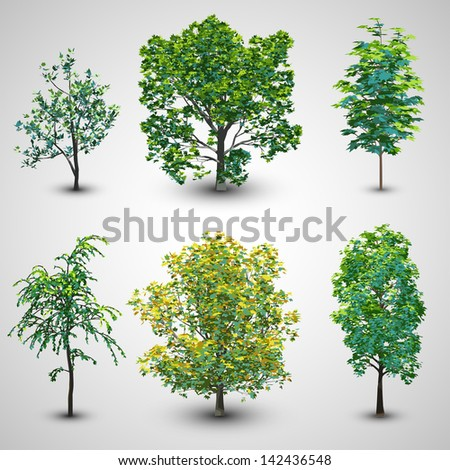Realistic Tree Set with Sunlight Set 2 | EPS10 Vector - stock vector