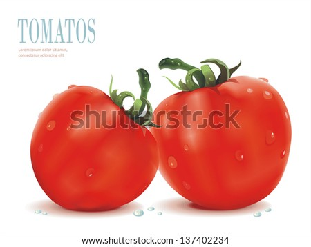 Realistic Vector illustration with Ripe tomatoes on white background, food illustration - stock vector