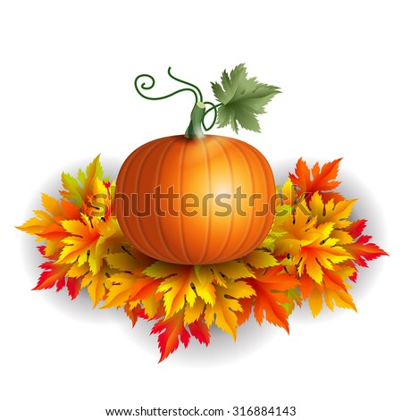 Realistic vector pumpkin on autumn leaves with shadows