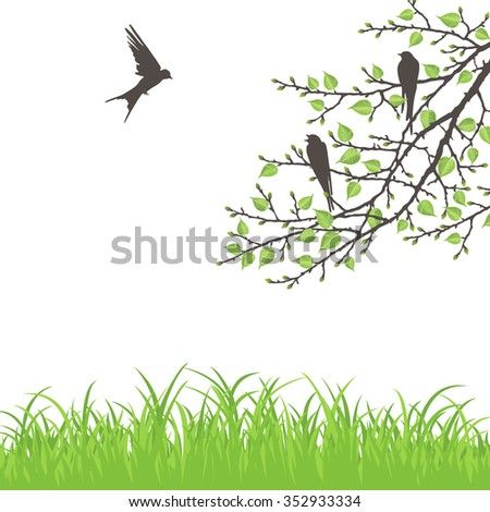 Realistic vector silhouette spring tree and birds for your design on  the white background. Vintage hand drawn illustration with space for text - stock vector