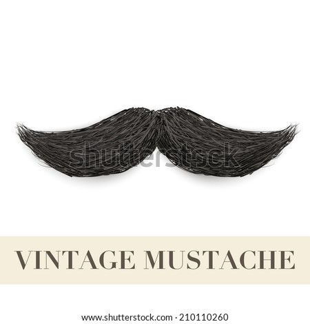 Realistic Vintage Black curly mustache. Vector Illustration isolated on a white background - stock vector