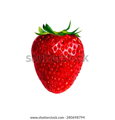 Realistic watercolor illustration strawberry isolated on white background vector  - stock vector