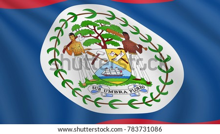 realistic waving flag belize current national stock vector royalty