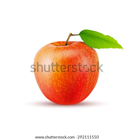 Red apple on white background, excellent vector illustration, EPS 10 - stock vector