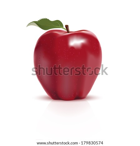 Red apple on white background. Vector illustration