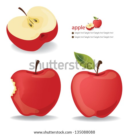 Red Apple vector illustration - stock vector