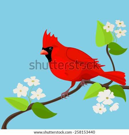 Red bird on the tree. - stock vector
