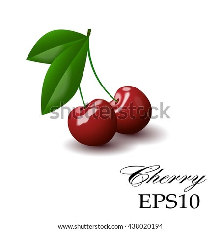 Red cherry on a white background - stock vector