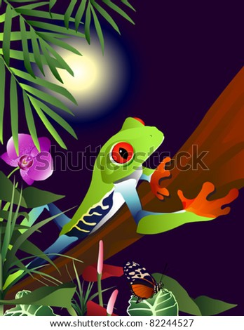 Red Eyed Tree Frog in the jungle. - stock vector