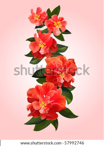 Red flowers - stock vector