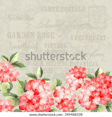 Red flowers design for postcard template. Vintage postcard background template for wedding invitation. Label with hortensia flowers. Vector illustration. - stock vector