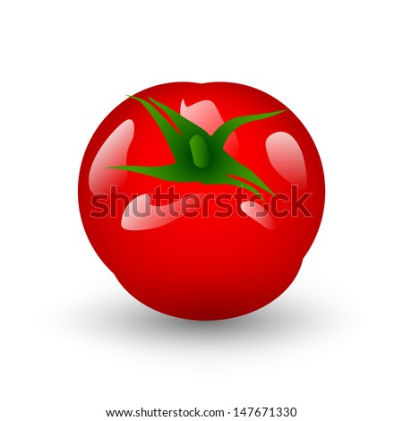 Red fresh tomato isolated on white background, Vector illustration. - stock vector