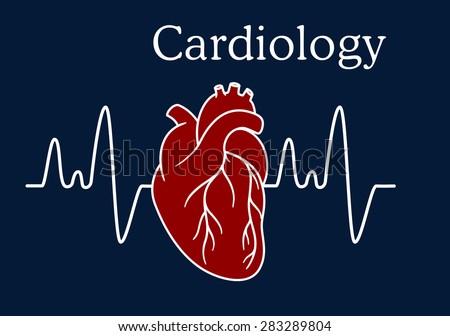 Red human heart with wave frequency for medical and cardiology concept design