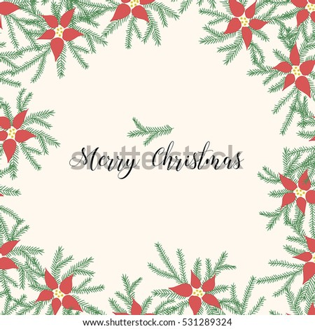Red poinsettia with fir branches. Christmas card.