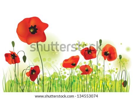 Red Poppies Field, summer landscape, vector illustration - stock vector