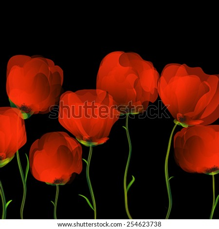 Red poppies row over black background - stock vector