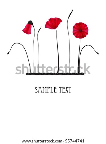 Red poppy flowers. Vector card. - stock vector