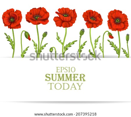 Red poppy flowers with space for text. Decorative Beautiful vector illustration  - stock vector