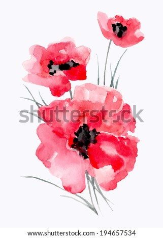 Red  poppy, watercolor painting. Vector flowers isolated on a white background. - stock vector