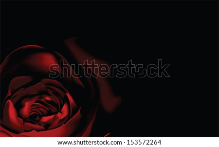 Red Rose background, vector - stock vector