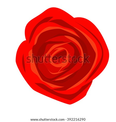 red rose isolated on white background.  Vector illustration.  - stock vector