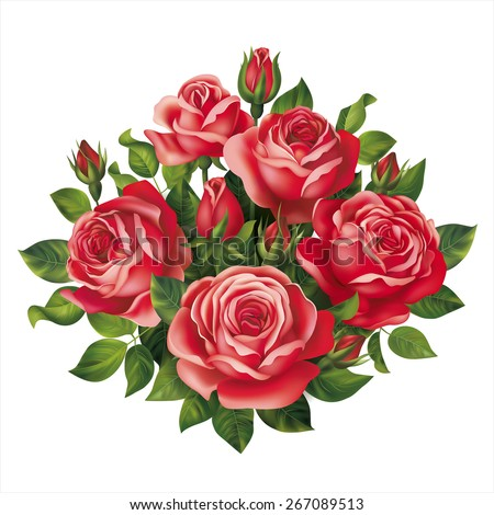 red roses bouquet vector eps 10