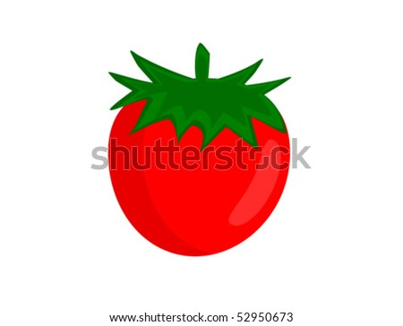 Red tomato vector illustration