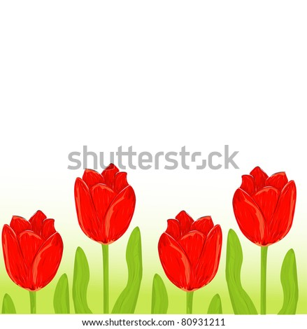 red tulip spring card - stock vector